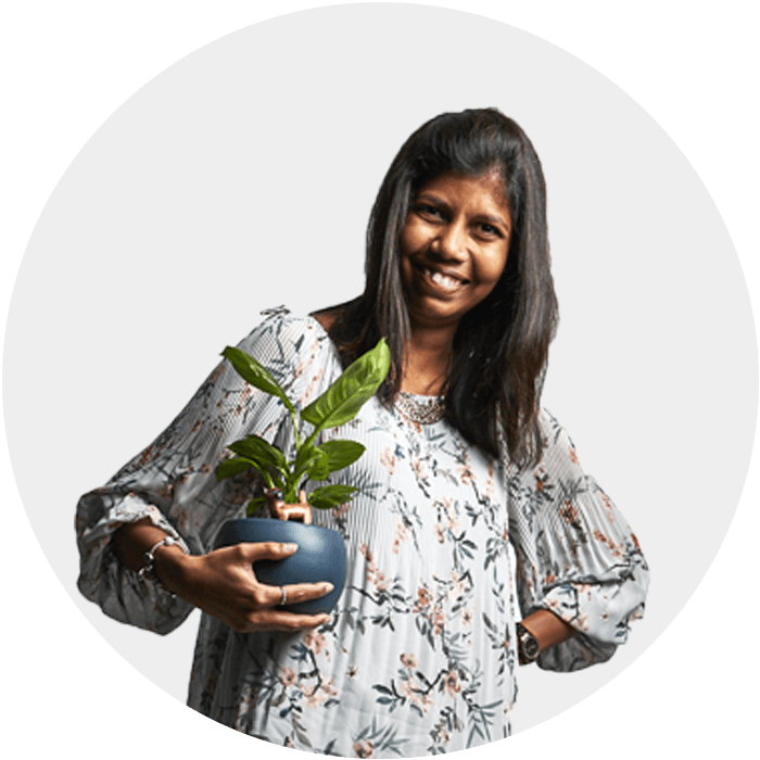 steffi wordpress designer from goa